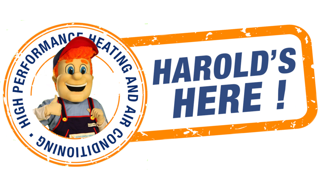 Happy Harold's tip of the week: take off your shoes!